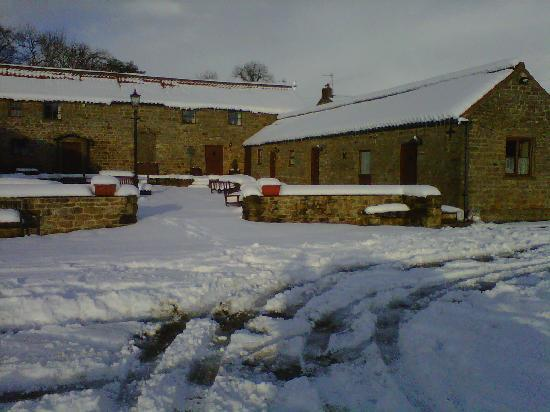 Rawcliffe House Farm Holiday Cottages and Studio Rooms: Rawcliffe House Farm in the snow!