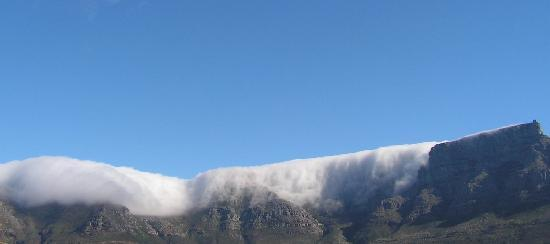 Upperbloem: Table Mountain