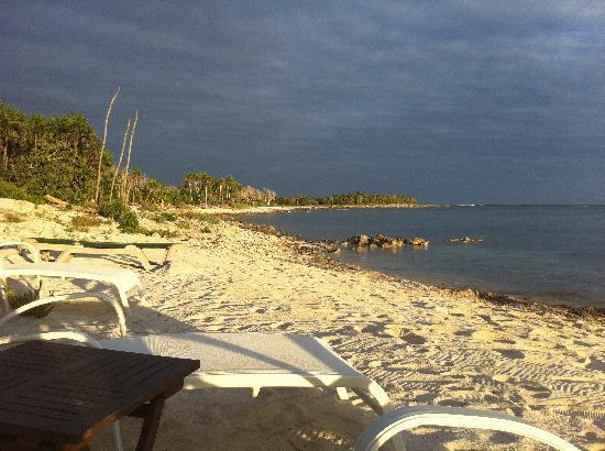 Hotel Jashita: beach..