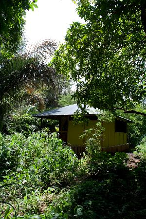"Murera Springs Eco Lodge: the ""tents"" are very private"