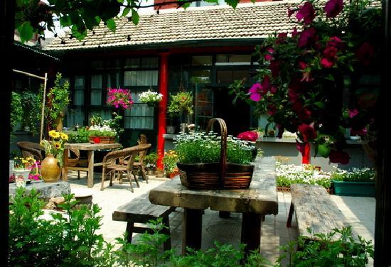 Peking International Youth Hostel
