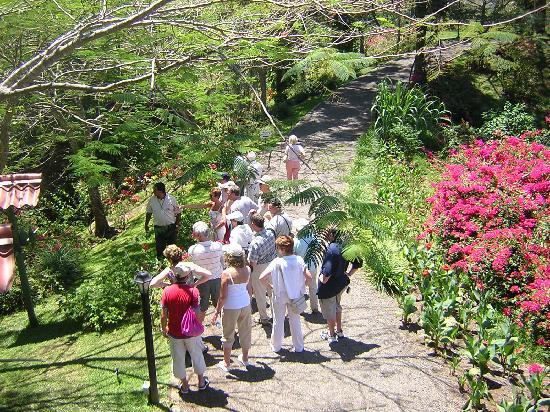 Pura Vida Gardens and Waterfalls: Tour Group