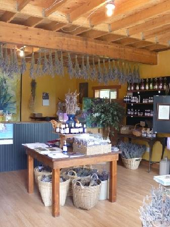Damali Lavender Farm and B&B: Lavender Shop