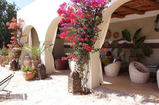 Chambres picture of villa maroc essaouira tripadvisor for Les jardins de villa paris