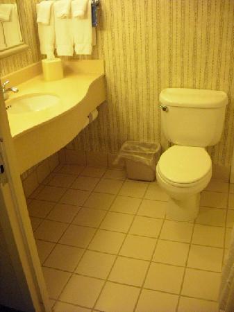 هيلتون جاردن إن ألينتاون بيت لحم إيربورت: Bathroom