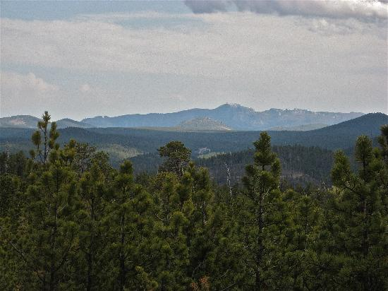 Mountains To Prairies Bed and Breakfast : Beautiful Black Hills - Harney Peak in distance