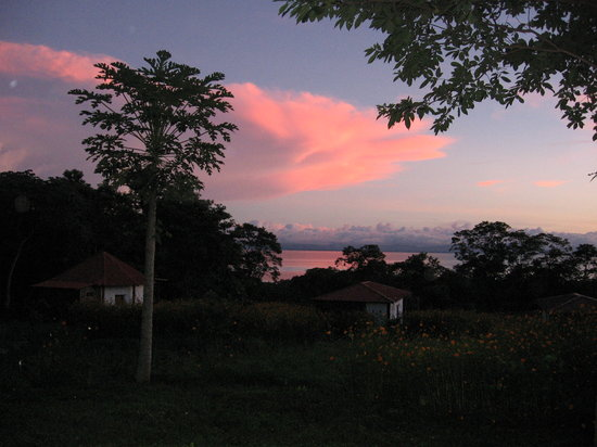 Finca Mystica: Papayas and cabins at sunset