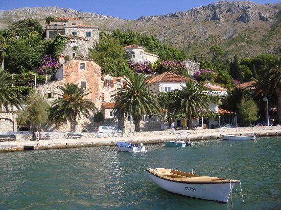 Apartments Tonkovic: Mlini Harbour