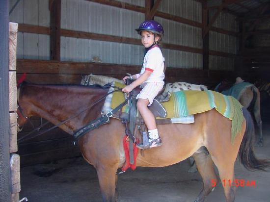 Juckas Stables : Riding again-Yay!