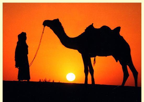 Haveli Hotel : sunset in desert