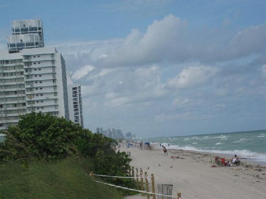 AAE Miami Beach Lombardy Hotel: Beach near hotel