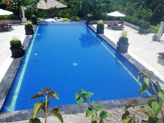 Sekar Nusa Villas: The pool