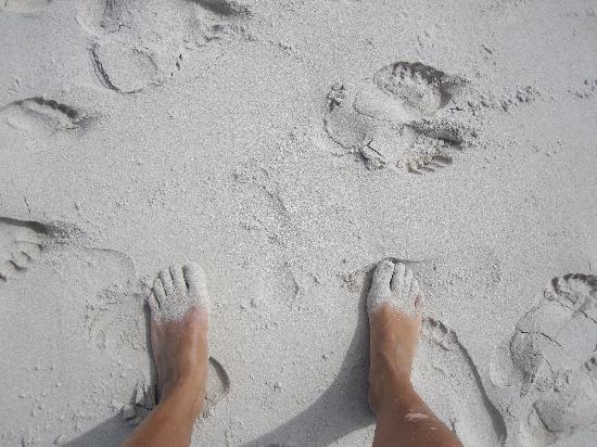 Puerto Ayora, Ekwador: la arena de Tortuga Bay en la parte brava