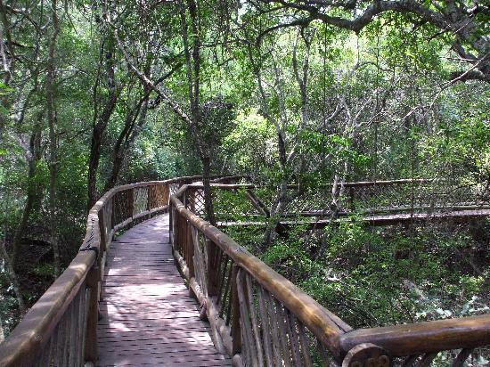 Nibela Lake Lodge: bridges connecting the bungalows