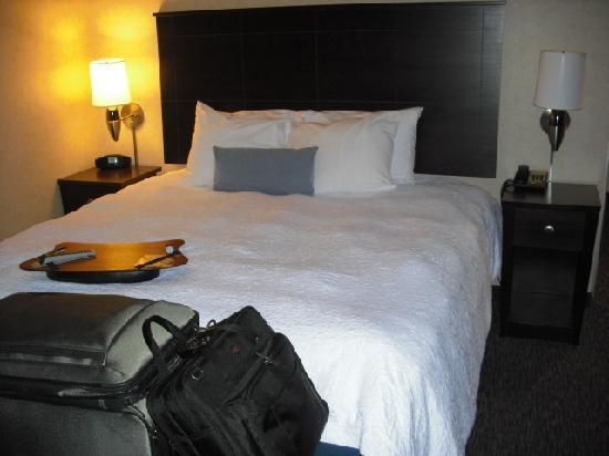 Hampton Inn Doylestown: King Size Bed
