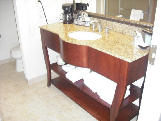 Hampton Inn Doylestown: Bathroom Vanity