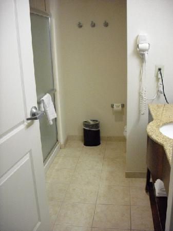 Hampton Inn Doylestown: Overview of bathroom