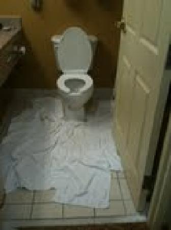 Country Inn & Suites By Carlson, Hinesville: bathroom floor covered in towels