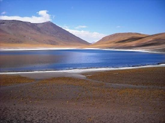 San Pedro de Atacama, Chile: LAGUNA MISCANTI