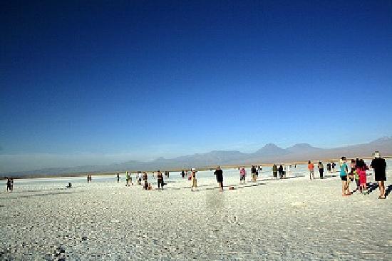San Pedro de Atacama, Chili : SALAR DE ATACAMA