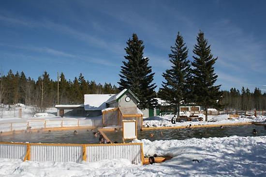 Takhini Hot Springs in winter