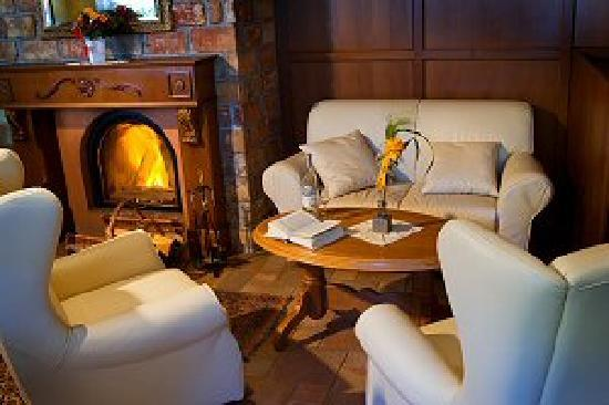 Hotel Wolkenstein : Fire place