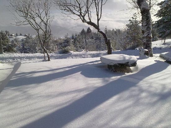 Casa das Penhas Douradas : view with snow