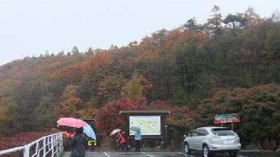 Kawamata Higashi Canyon Shizen Kansatsuen: 駐車場付近