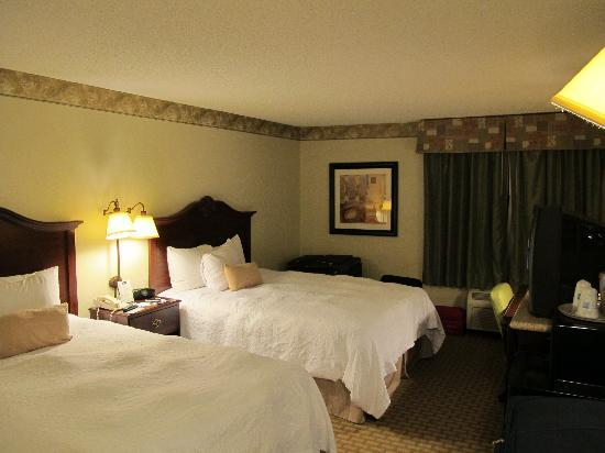 Hampton Inn Orlando/Lake Buena Vista: La camera
