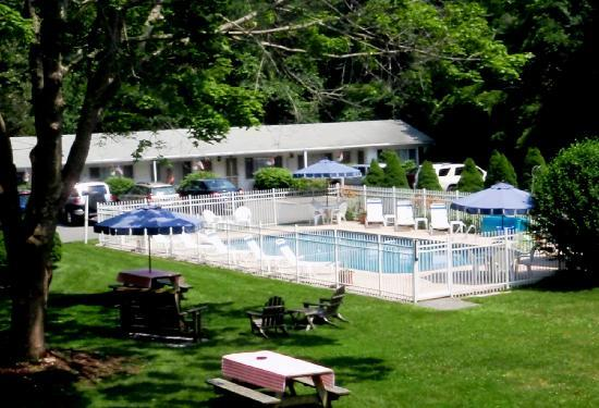 Sesuit Harbor House: Pool & Grounds