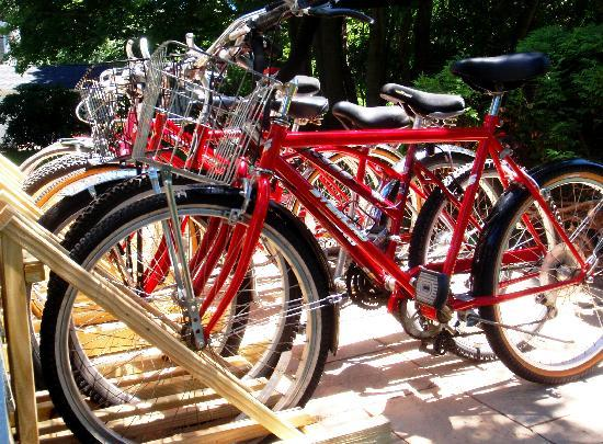 Sesuit Harbor House: Beach Cruisers