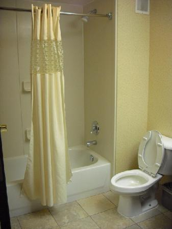 Hampton Inn And Suites Valley Forge/Oaks: Overview Of Bathroom And Shower