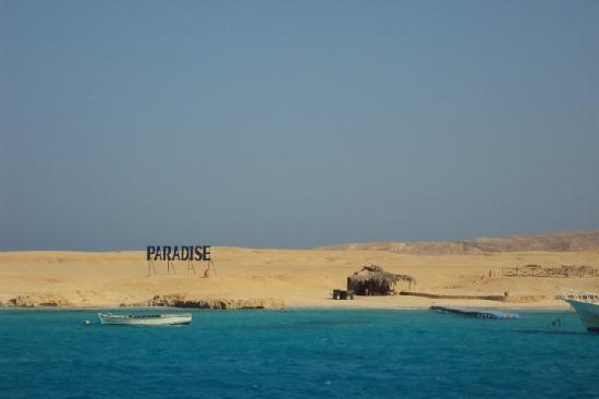 Hurghada, Ägypten: Giftun Island - snorkeling