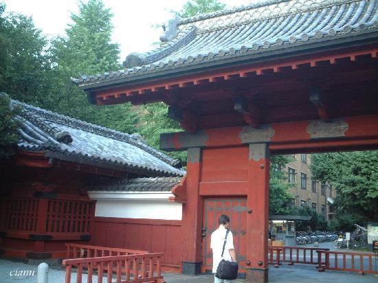 University of Tokyo: 赤門