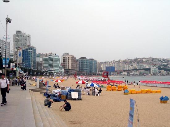 The Westin Chosun Busan: 雲海台ビーチ