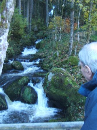 Gasthaus Rebstock: large Waterfalls at Triberg