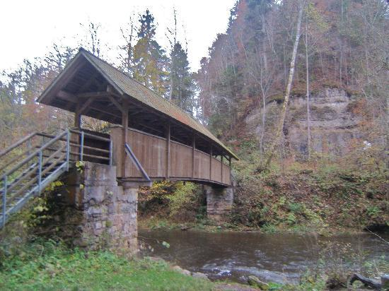 Gasthaus Rebstock: bridge near Wutachmühle