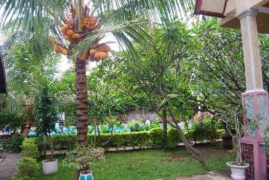 Mas Bungalows: Pool im Garten