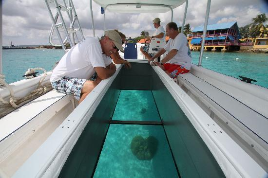 See thru glass bottom boats