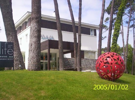 Awa Boutique and Design Hotel: vista hotel