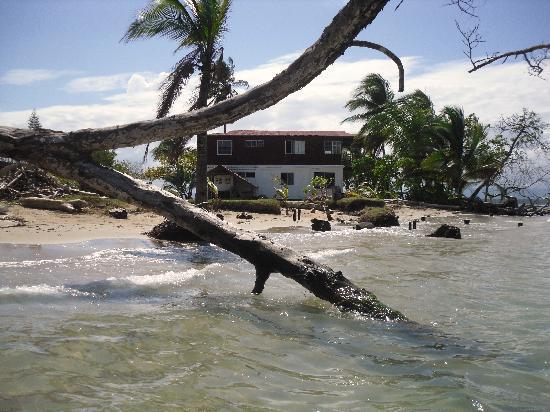 Tripadvisor Bocas Del Toro Panama: Review Of Bocas Del Toro, Panama