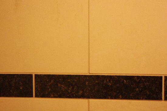 Hilton Seattle Airport & Conference Center: new grout and tile