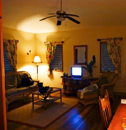 Hickatee Cottages: Living area from bedroom door