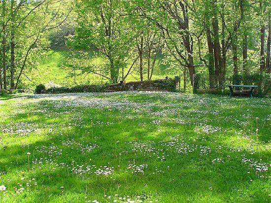 La Source Loubetas : The courtyard in Spring - La cour au printemps