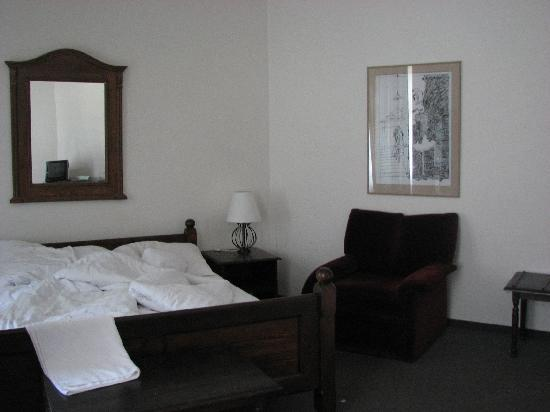 Hotel U Krize: The room - photo 3