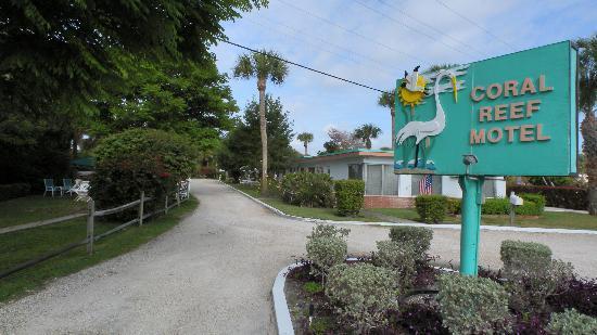 Coral Reef Motel : Motel Driveway