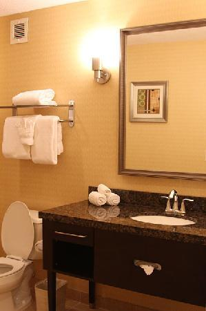 Holiday Inn San Mateo-San Francisco SFO : Vanity in spacous bathroom