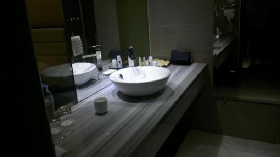Landscape Hotel: Bathroom 1