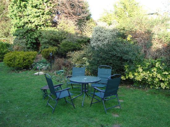 Best Inn Hotel: garden