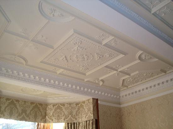 Plaster Ceilings Picture Of The